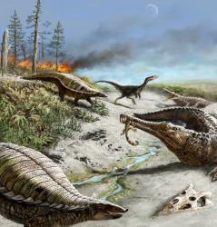 Only small, carnivorous dinosaurs could have survived these conditions, a study finds.