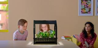 Ikea Wants To Help American Families Grow Their Own Food Through The Wonder  Of Hydroponics. (YouTube)