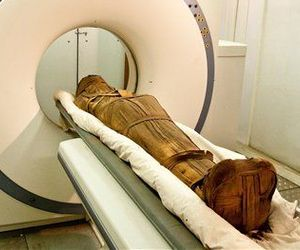 A mummy enters a CT scanner tube set up outside of the Egyptian National Museum of Antiquities in Cairo.