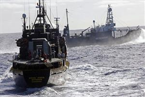The Sea Shepherd protesters said they lobbed butyric acid, produced from stinking rancid butter, which they often aim at the whalers to try to disrupt the annual Japanese hunt. The activists maintain that butyric acid is nontoxic.