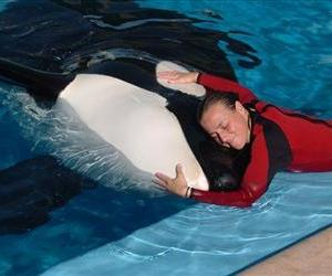 In this photo taken Dec. 30, 2005, Dawn Brancheau, a whale trainer at SeaWorld Adventure Park, is shown while performing.
