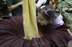 A young girl braves an up-close smell in Australia in 2008.