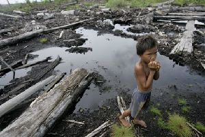 An Indonesian girl plays at an abandoned logging site in Kuala Cenaku village in Riau province, on Sumatra island, Indonesia, Saturday, Nov. 3, 2007. Excessive logging has made contact between elephants and humans more common and more dangerous. (AP Photo/Dita Alangkara)