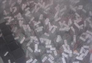 Vials of sperm are frozen seen at a sperm bank.