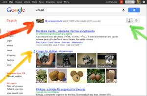 As an example, Google showed personalized results from a searcher who named his dog after the chikoo tree.