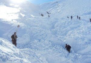 In this Wednesday, Jan. 18, 2012 photo, Afghan villagers search for victims of an earlier avalanche in Raghistan, Badakhshan province.