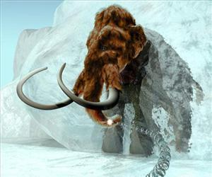 This undated handout provided by ExhibitEase LLC  shows a  3D computer generated Image of woolly mammoth emerging from ice block.