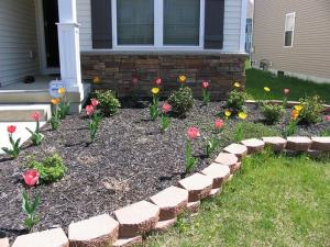 This is not Kimberly Bois' flower bed, but it is a bed of flowers.