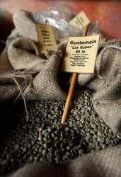 Unroasted, green coffee beans on sale at a California coffeehouse.