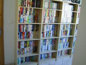 A French video game collector has sold what is likely the largest game collection ever for more than $1.2 million.