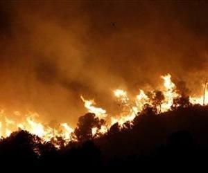 Two birds, center, fly over a burning forest fire in Pedralba, near Valencia, Spain, Monday, Sept. 24, 2012.