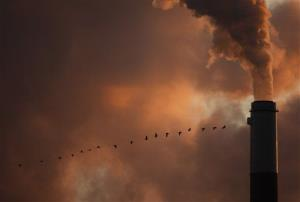 A flock of geese fly past a smokestack in Kansas.