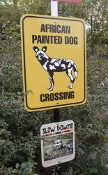 A sign to inform visitors about African Painted Dogs is seen during a press tour near the overlook platform where a boy fell into the exhibit at the Pittsburgh Zoo on Nov. 5, 2012.