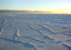 The Antarctic sunlight illuminates the surface of the sea ice.