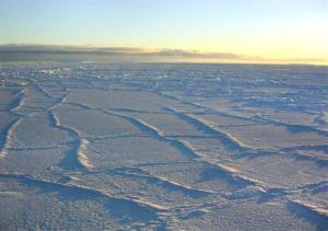 The Antarctic sunlight illuminates the surface of the sea ice.
