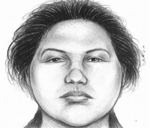 A sketch of the woman who pushed a man to his death in the subway on Thursday, Dec. 27, 2012. Police arrested Erika Menendez after a passerby noticed she resembled the woman in a surveillance video.