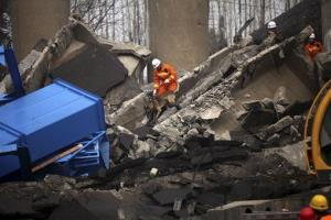 A rescue worker with a dog looks for victims at the accident site where an expressway bridge partially collapsed in Mianchi County, Sanmenxia, central China's Henan Province.