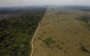 In this Sept. 15, 2009 file photo, a deforested area is seen near Novo Progresso in Brazil's northern state of Para.