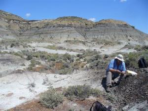 In this July 6, 2012 photo, Paul Renne collects a volcanic ash sample from a coal bed in Montana, within a few centimeters of the dinosaur extinction layer.