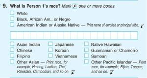 This photograph of a sample 2010 US Census form obtained by the AP shows question 9: What is Person 1's race, on the first page of the 2010 Census form, with options for Black, African Am., or Negro.