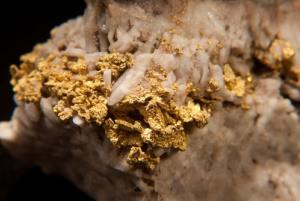 Gold can form in an earthquake, a study says.