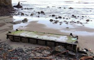 This Jan. 3, 2013, photo provided by Olympic National Park shows a dock that washed ashore on a wilderness beach near Forks, Wash.