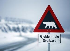 A sign warning of polar bears is seen outside of Longyearbyen, Norway, as far north as you can fly on a scheduled flight. It is less than 620 miles from the North Pole.