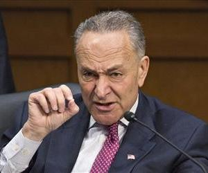Chuck Schumer makes a point during a markup session, on Capitol Hill, May 9, 2013.