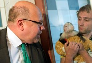 German Minister for Environment Peter Altmaier visits Justin Bieber's capuchin monkey Mally at the animal shelter in Munich southern Germany, Tuesday, May 21, 2013.