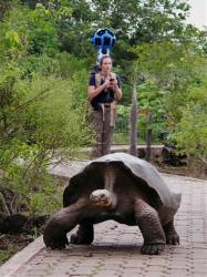 A giant tortoise crawls along the path near Googler Karin Tuxen Bettman while she collects imagery with the Street View Trekker in Galapaguera.