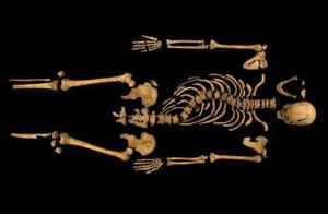 The remains of King Richard III, found underneath a car park last September at the Grey Friars excavation in Leicester.