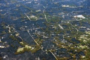 Blackened areas define the path of a wildfire that destroyed some homes and left others untouched in one neighborhood in the densely wooded Black Forest area northeast of Colorado Springs, Colo.