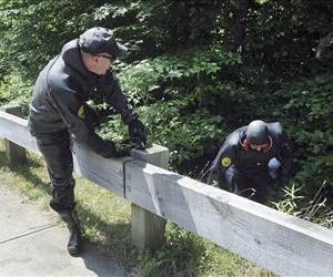 Law enforcement officers wearing wetsuits emerge from bushes during a search for evidence along a road near Aaron Hernandez's home, June 24, 2013, in North Attleborough, Mass.