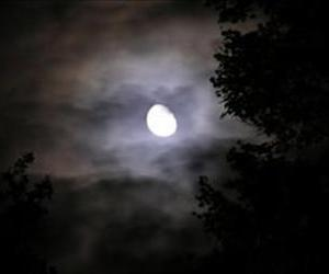 Vampire stock art is really awful, so we once again went with this spooky moon.