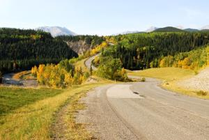 The woman became lost after fleeing into the woods from a country road in Alberta.