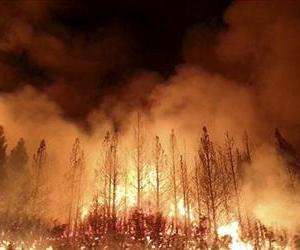 In this undated photo provided by the U.S. Forest Service, the Rim Fire burns near Yosemite National Park, Calif.