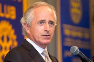 Sen. Bob Corker, R-Tenn., is calling for very surgical action in Syria.