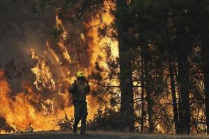 With winds gusting to 50 mph on Sierra mountain ridges and flames jumping from treetop to treetop, hundreds of firefighters have been deployed to protect  communities in the path of the fire.