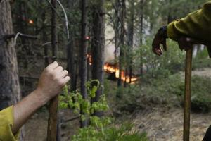Two firefighters monitor a back burn during the Rim Fire near Yosemite National Park.