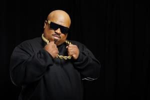 Musician CeeLo Green poses for a portrait, on Monday, Oct. 14, 2013, in New York, to promote his singing competition series The Voice.