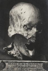 This photo shows what may or may not be the head of Henry IV.