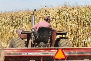 A Wisconsin dairy farmer drives his tractor planting winter wheat at his farm near Verona.