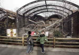 Visitors pass the empty cages outside the feline exhibit at the Denver Zoo in east Denver, in this Feb. 25, 2007, file photo.