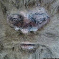 Rick Dyer's photo of the alleged creature.