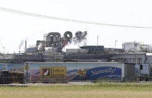 A Foster Farms processing plant on Thursday, Oct. 10, 2013, in Livingston, Calif. The plant is one of three in California linked to a salmonella outbreak that has sickened 278 people across the country.