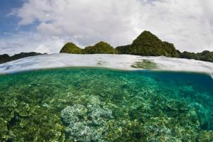 Inside a lagoon, a healthy and diverse coral reef grows near a group of limestone islands in the Republic of Palau.