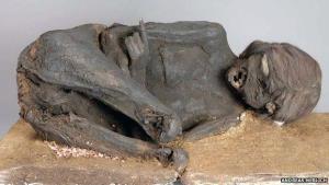 The unfortunate mummy.