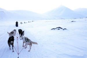 A dogsled team winds through a pass toward a glacier March 1, 2008 outside  Longyearbyen, Norway on the Arctic archipelago of Svalbard.