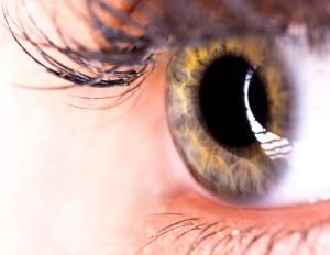 We seem to perceive reality in 15-second moments, a study finds.