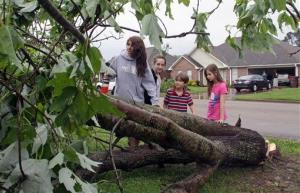 Seventeen year-old Deanna Locke and her siblings including, from left, Charlotte, 13; Drew, 9; and Trinity, 11; examine a downed tree across the street from their home in Tupelo, Miss., after a suspected tornado moved through town earlier on Monday, April 28, 2014.